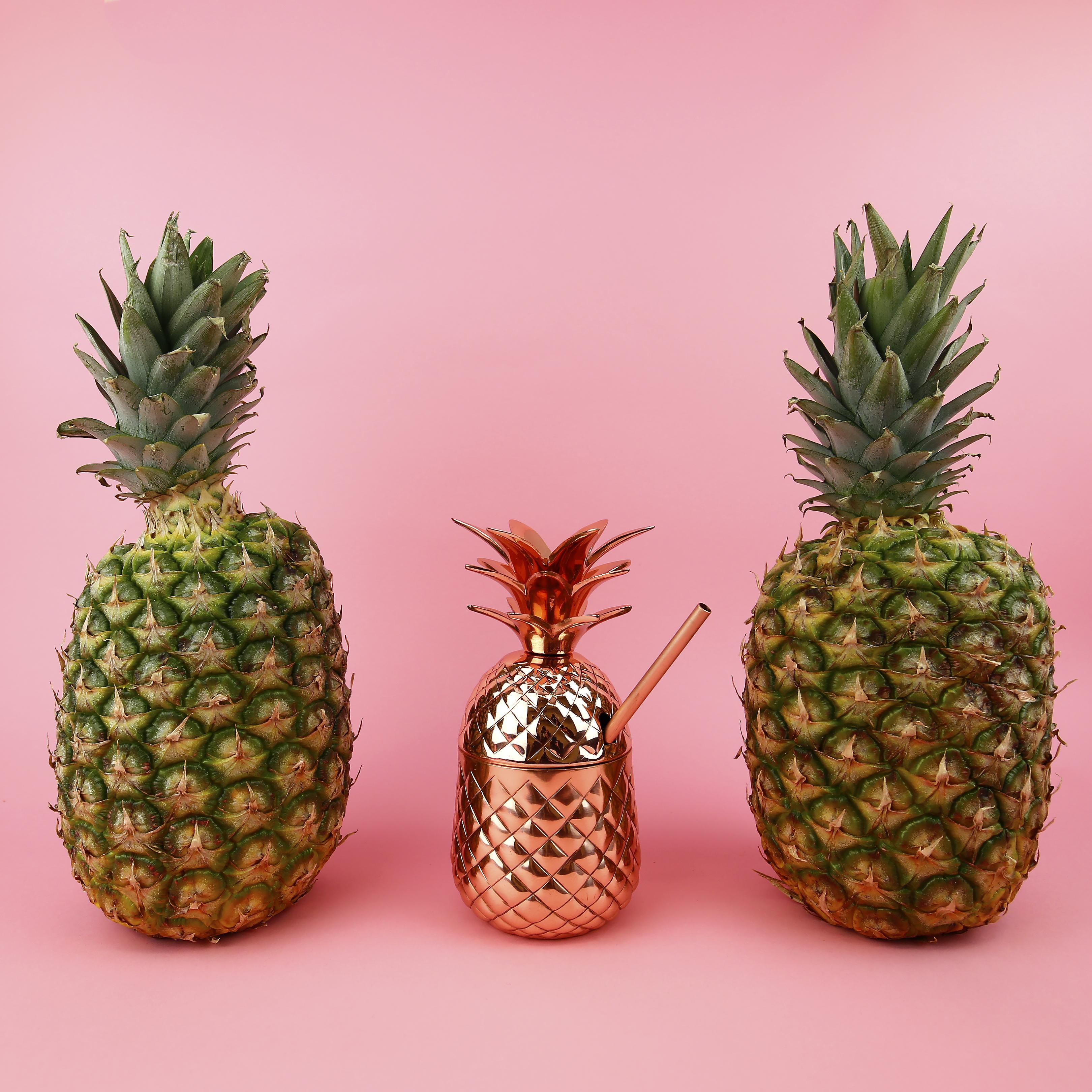PineappleTumblr_Airstream